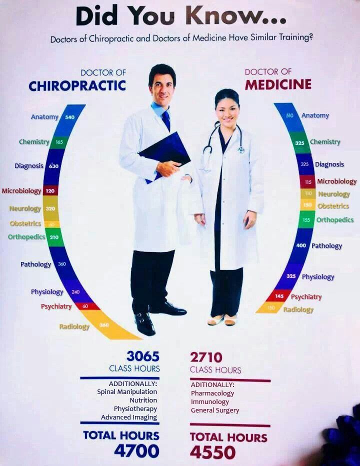 42 best images about chiropractor