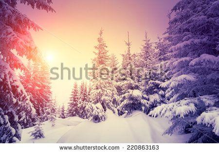 Fantastic landscape glowing by sunlight. Dramatic wintry scene. Natural park. Carpathian, Ukraine, Europe. Beauty world. Retro style filter. Instagram toning effect. Vivid violet. Happy New Year! - stock photo