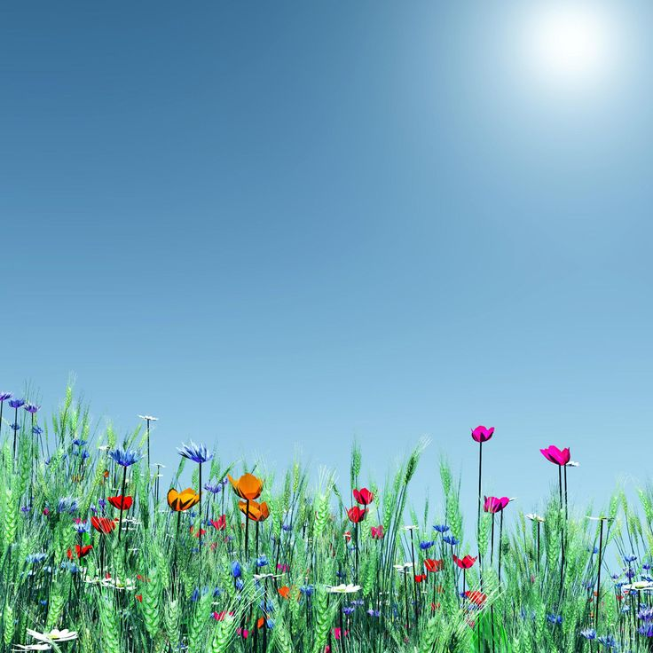 Cool Spring Wallpapers: 64 Best IPad Wallpaper Images On Pinterest