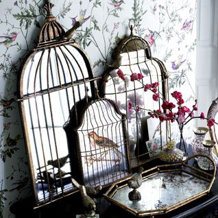 1000 images about bird cage collection on pinterest for Cage a oiseau decorative