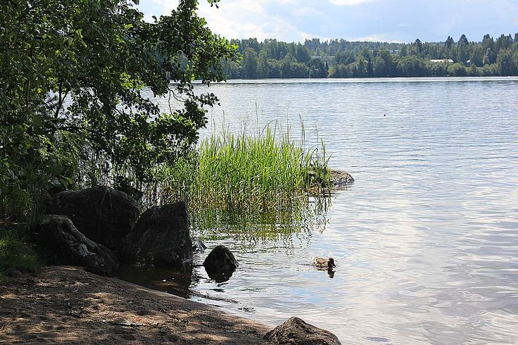 Viikinsaari Island, Tampere http://www.heitza.com/viikinsaari-island-tampere/