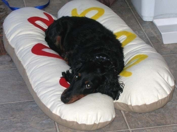 Wienie dog bed!Dogs Beds, Weenie Dogs, Small Dogs, Doggie Beds, Doxie Dogs, Dogs Doggie, Dog Beds, Hot Dogs, Dogs Buns