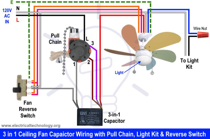 Diagram Ceiling Fan Wiring Diagram With Reverse