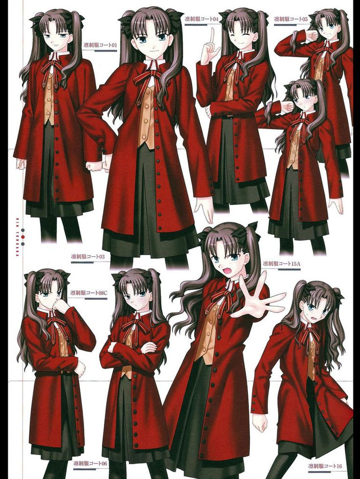 Fate stay night illimité Blade Works Aoi Tosaka rouge