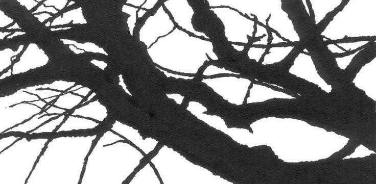 Gilles de Rooij - boomtakken 2