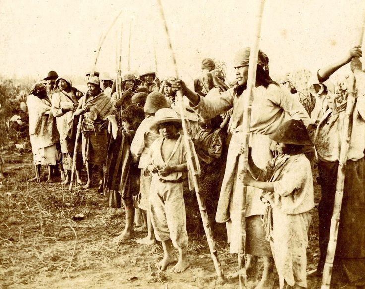 Population of Wichis, 1890s -- The Wichí are an indigenous people of South America. They are a large group of tribes ranging about the headwaters of the Bermejo River and the Pilcomayo River, in Argentina and Bolivia. This ethnic group was named by the English settlers and is still widely known as Mataco. The etymology of the term is obscure but in several sources, it is cited that the Wichí find the term derogatory.