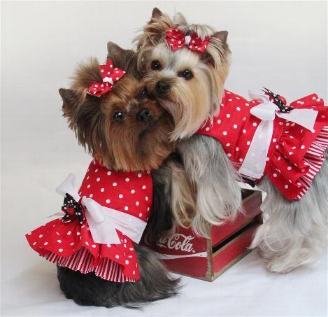 Harness Dresses - Dog Dresses, Pet Apparel, Designer Dresses