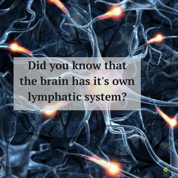 Did you know that the brain has it's own lymphatic system?    The brains lymphatic system (aka the glymphatic system) helps our brains filter out toxins that can be harmful and affect our brain and mental health.           The lymphatic system has a variety of different functions and is made up of lymph nodes and lymphatic vessels drain that filter and the lymph fluid from our cells.       When these cells come in contact with a harmful substance (bacteria virus or toxin) it will  launch an…