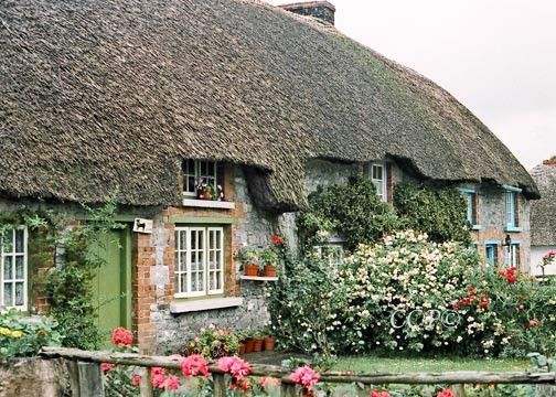 Ireland Thatched Cottage Green Home And Wall Decor Fine Art 5 x 7 Photograph    This Photograph was taken in one of those lovely quaint little