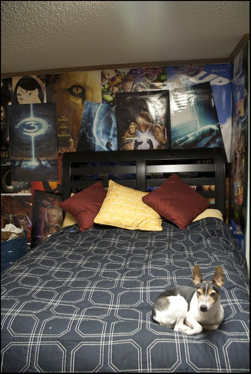 This bedroom with tons of nerdy posters (and a cute dog). | Community Post: The 32 Geekiest Bedrooms Of All Time