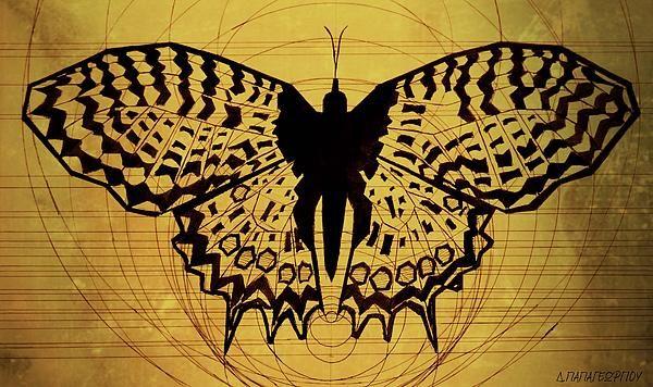 Butterfly Symmetry 1
