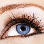International Research Labs Rapid Lash Eyelash Serum: The Beauty Central Review