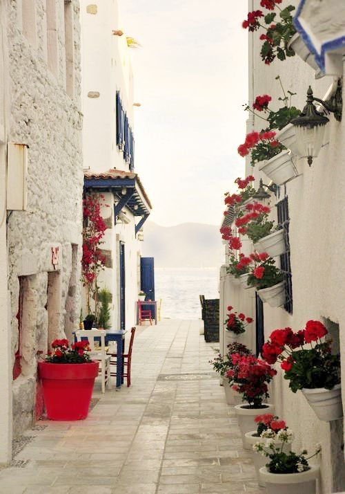 beautiful wedding venue with the decoration of red flowers Get your perfect Travel Plan for Santorini at www.Guidora.com