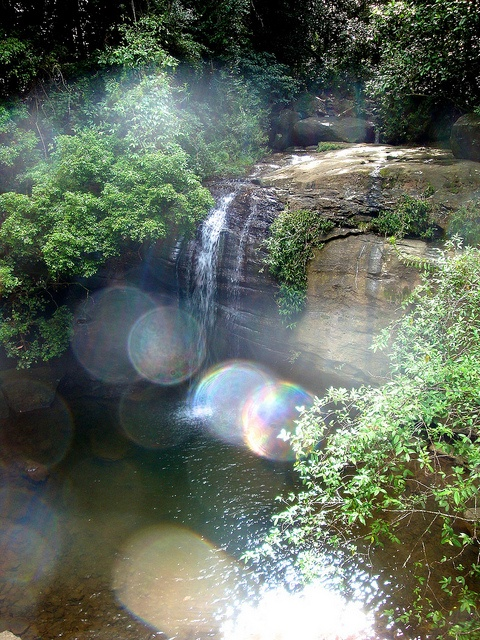 Buderim Falls, Australia - the most simple of beautiful hikes close to home.