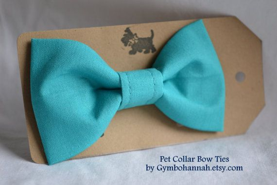 Teal Blue Bow Tie for dogs or cats Pet collar bow ties weddings photography pet fashion on Etsy, $12.00