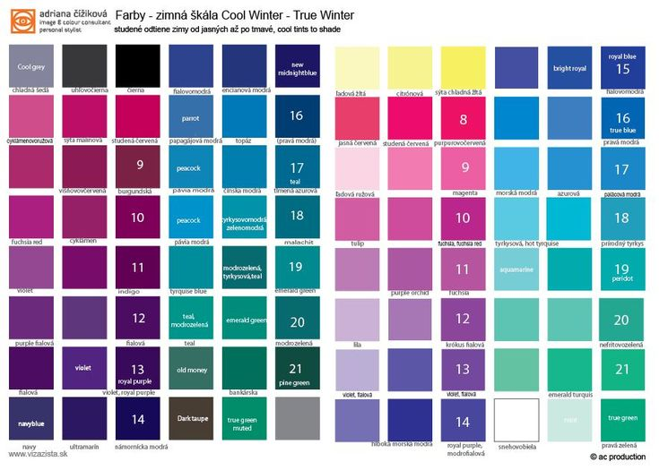 Cool Winter palette. Your colours are cool from icy to dark cool colours. True Winter. The most important is coolness. You can wear cool tints, cool shades.
