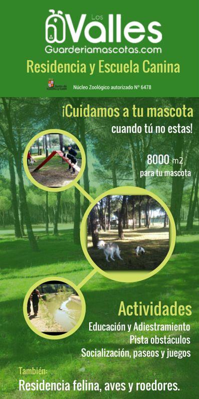 8000 m2 para que tu mascota disfrute cuando tú no estas. Residencia Canina Los Valles en Valladolid. Guardería de mascotas y cursos de educación y adiestramiento canino.