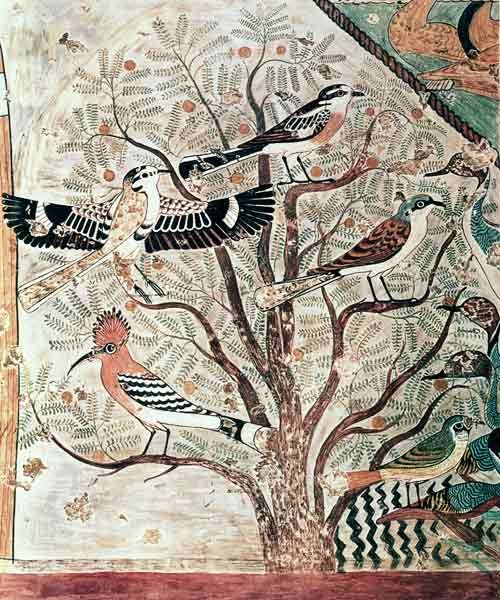"Amazing Ancient Egyptian Painting ""Birds in an acacia tree, wall painting from Tomb of Khnumhotep III, Beni Hasan, Middle Kingdom"" ca. 1950-1900 BCE. We can recognise the hoopoe bird (Upupa epops)."