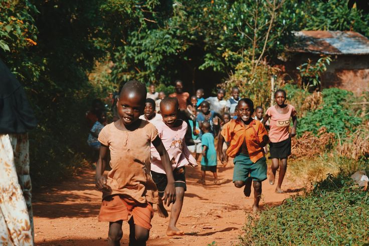 Malaria Disease and Health Advice for Foreign Travel to Africa: Precautions to Take in Malaria-Prone Areas