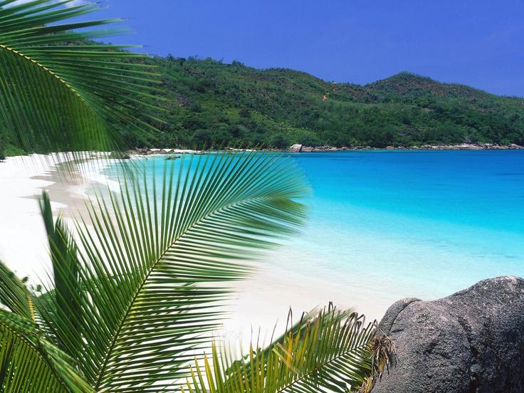 Tropical Paradise Seaside Bathe Curtain