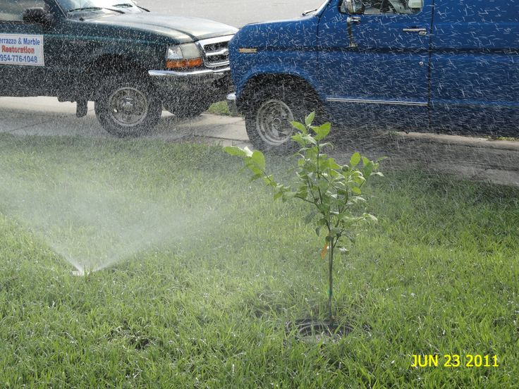 How To Design, Install, and Build an Automatic Lawn Sprinkler System