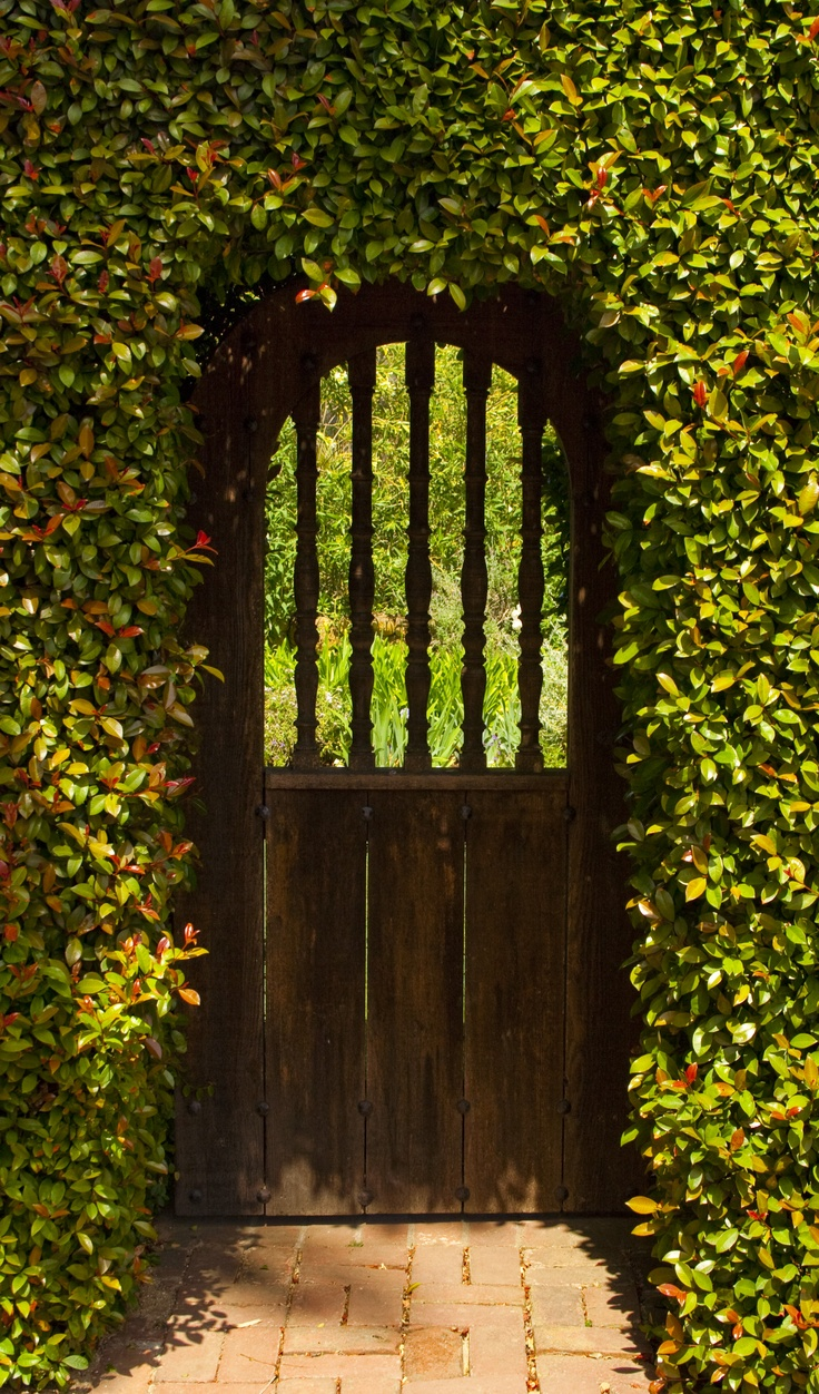 17 best images about garden gates on pinterest gardens for Secret design