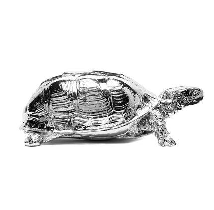 Chrome Box Turtle Box   SHOP Cooper Hewitt. Price: $55.00