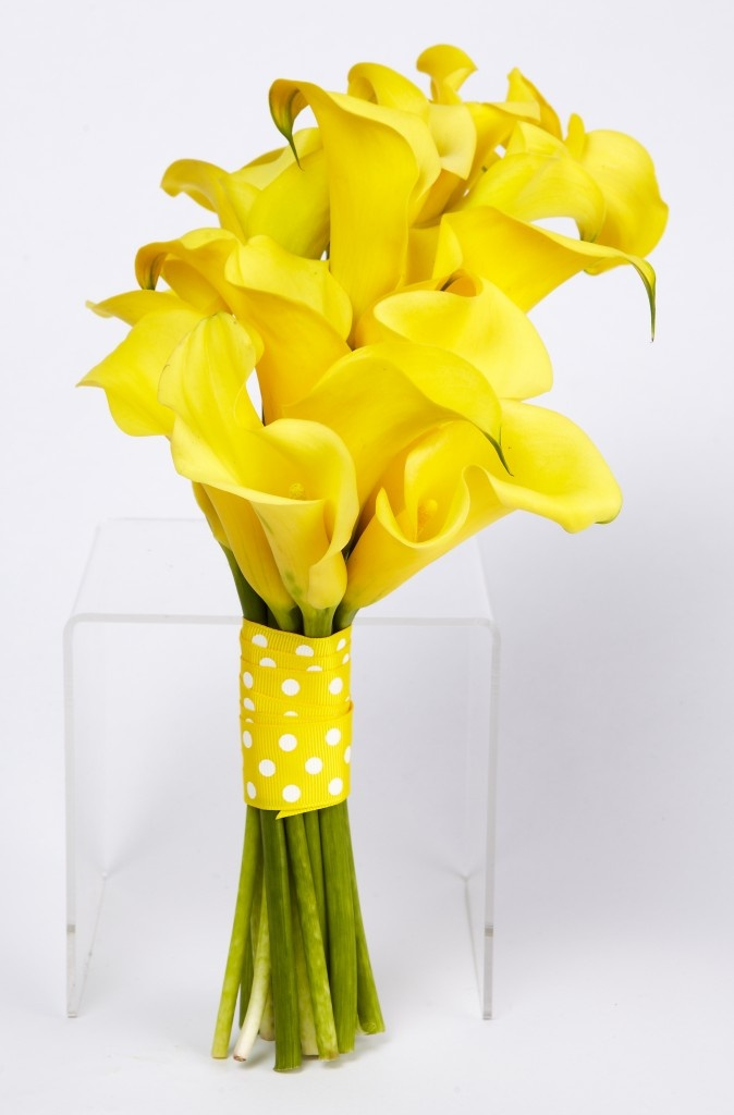 Yellow Calla Lilly Wedding Bouquet This is what my bridesmaids will be carrying but with a royal blue ribbon