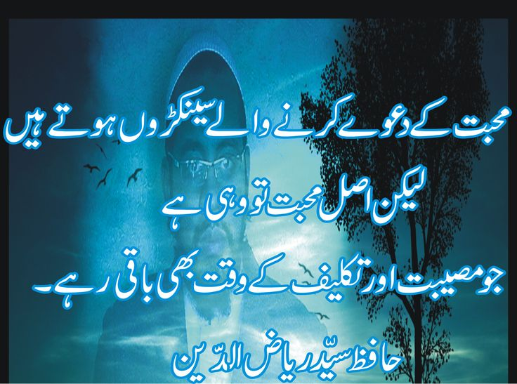 Pin by Hafiz syed Riaz uddin on Urdu quotes about Islam ...