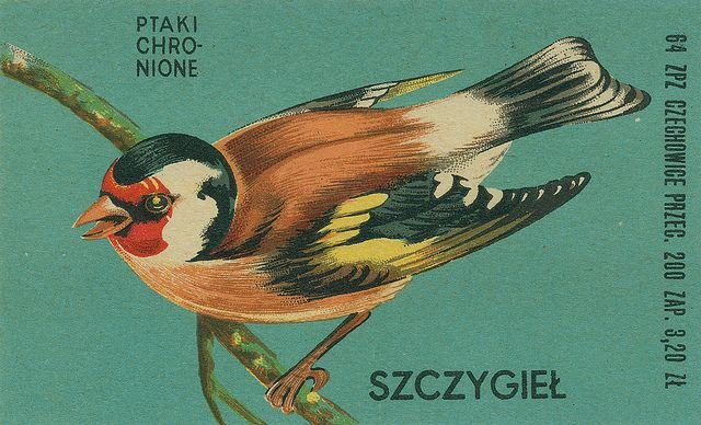 "Goldfinch"" from Polish matchbox series of Protected Birds."