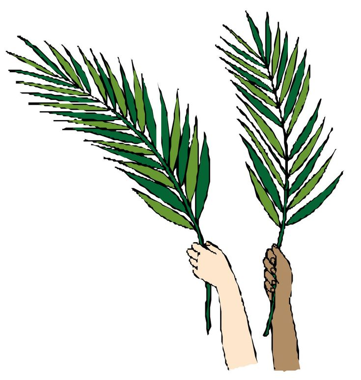 26 best palm sunday images on pinterest happy palm sunday palm rh pinterest com Palm Branch Clip Art Outline Palm Leaves Clip Art