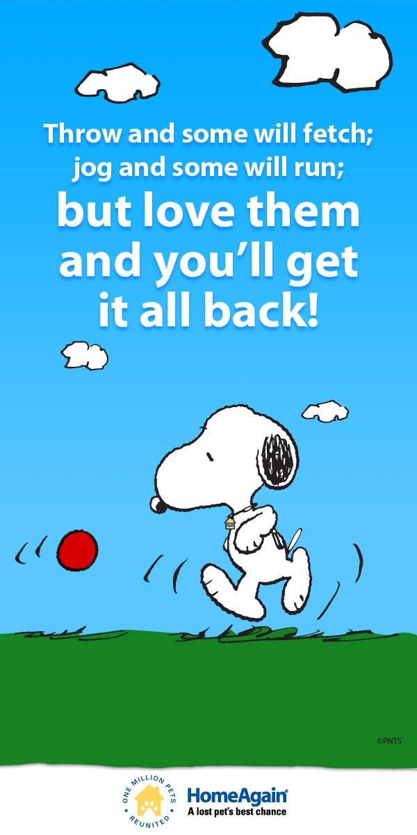 107 best images about Snoopy sayings! on Pinterest ...