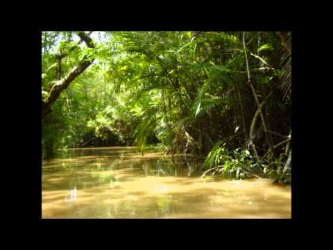 Philip Glass - Japurá River (Uakti) - YouTube