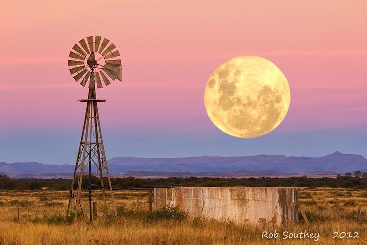 Classic Karoo farm scene by Rob Southey.
