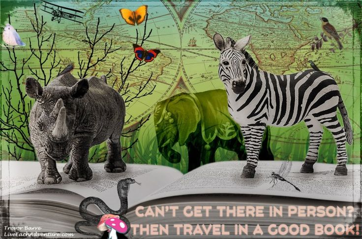 This week's DigitalArt image is a reminder that while we may not all be able to travel around the world at will, there is a wealth of travel stories and literature at our fingertips. All we need do is turn the page and jump right in. So keep reading to find out how we compiled this week's image for you.