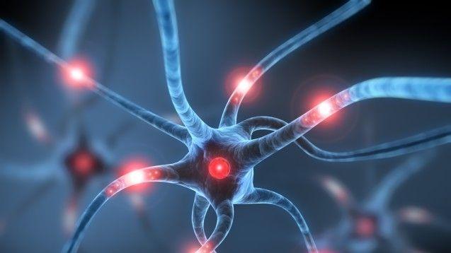 #Eli Lilly, Roche, Roche, Merck & Co: 2017 wichtiges Jahr in der Alzheimer ... - DAZ.online: DAZ.online Eli Lilly, Roche, Roche, Merck &…