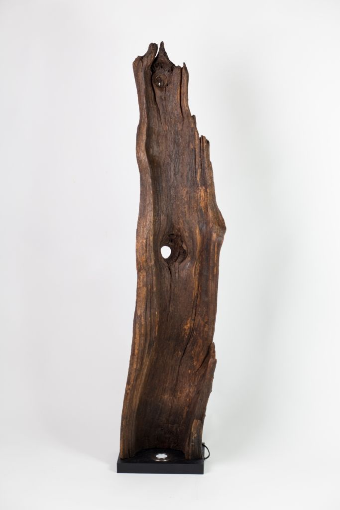 How a perfect piece of wood has turned to a floor lamp