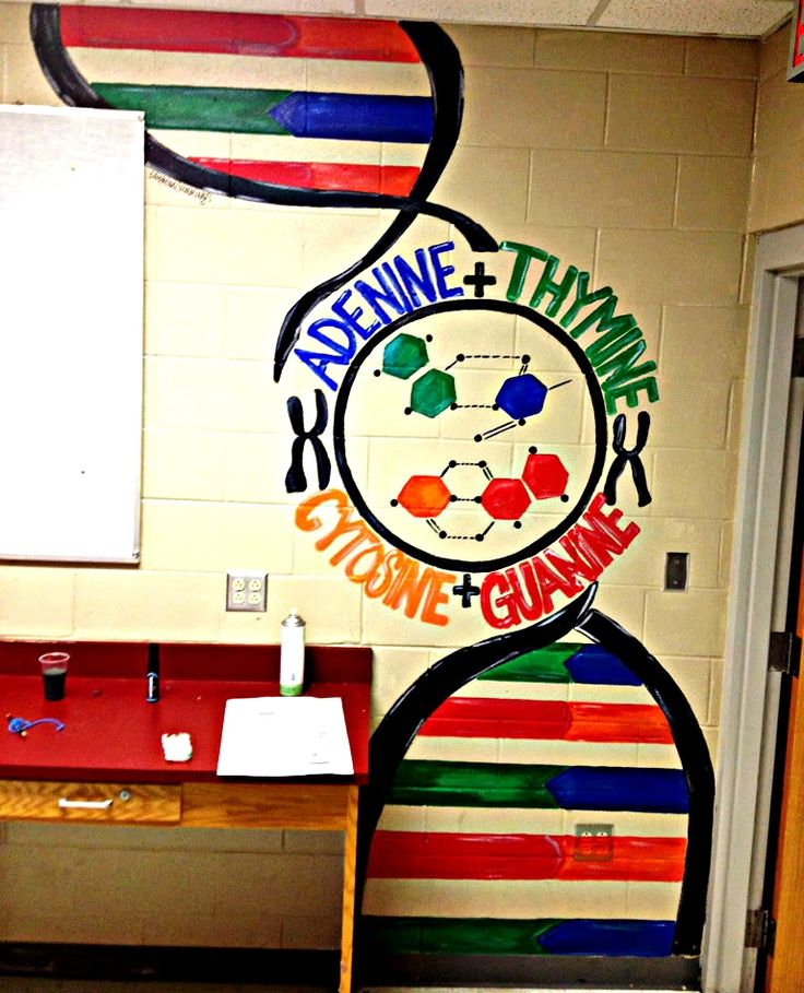 High School Biology Classroom Decorations ~ I painted this for a high school biology classroom dna