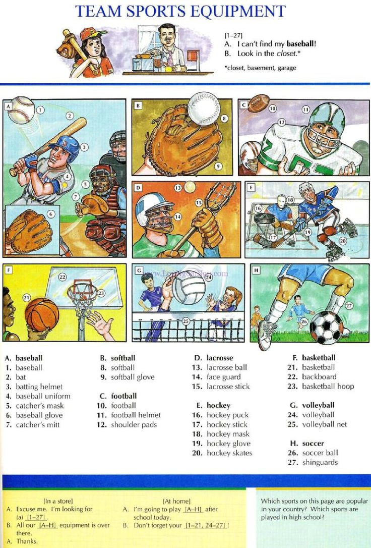 101 - TEAM SPORTS EQUIPMENT - Picture Dictionary - English Study, explanations, free exercises, speaking, listening, grammar lessons, reading, writing, vocabulary, dictionary and teaching materials