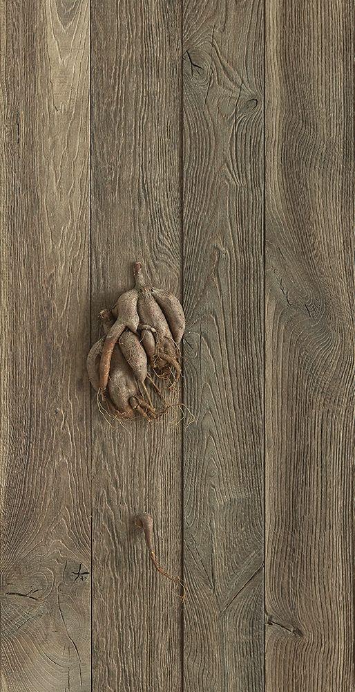 Mémoire Vivante : Chêne Côtier et Racine de Bonsaï #parquet #art #interiordesign #interiorarchitecture #wood #woodfloor #paris #carresol
