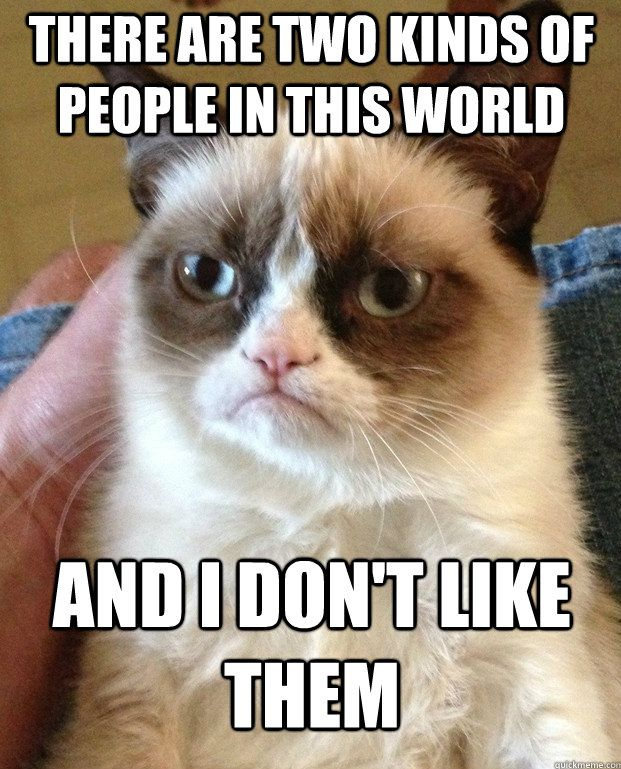 This frickin grumpy cat gets me everytime!!! I will never get tired of this shit hahaha