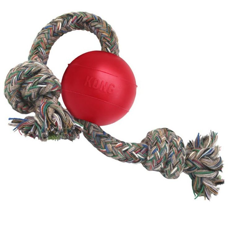 KONG Ball With Rope $19.95