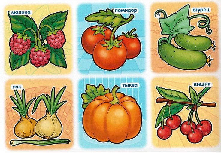 этот другие развивающие картинки фрукты и овощи для будем выкладывать