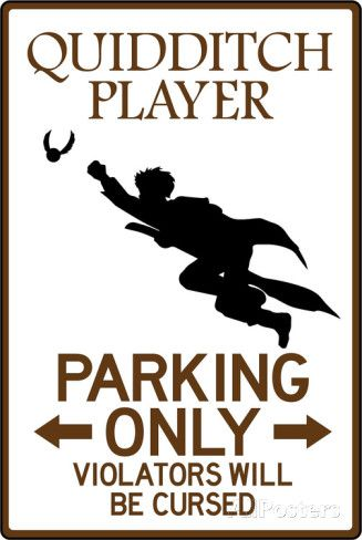 1000+ images about Muggle Quidditch on Pinterest