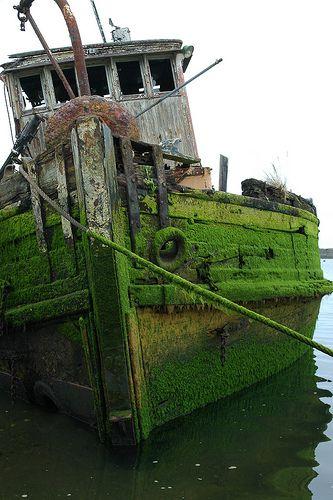 Abandoned Boat https://www.pinterest.com/joysavor/abandoned-places-nature-abides/
