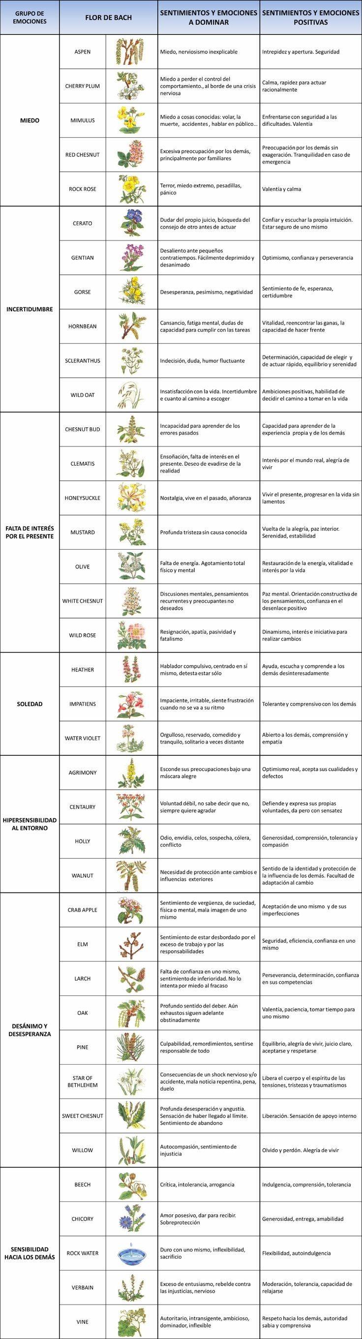 Flores de Bach - Cuadro resumen Remedios florales