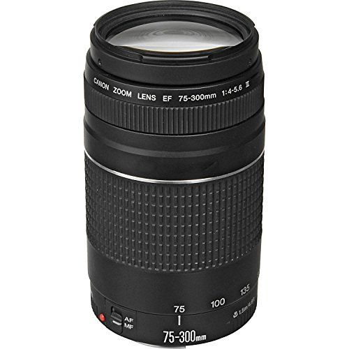 Discounted Canon EF 75-300mm f/4-5.6 III Telephoto Zoom Lens for Canon SLR Cameras (Certified Refurbished)