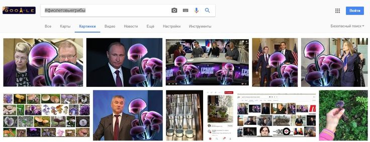 Google картинки #фиолетовыегрибы Скан поисковой выдачи   google-picture-2017-04-26 at 02-59-43.jpg