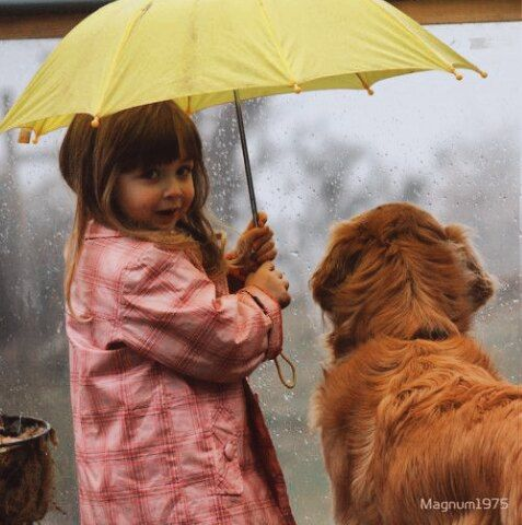 Счастливый человек – это тот, который не жалеет о прошлом, не боится будущего, и не лезет в чужую жизнь.  #юмор #хорошеенастроение #мотивация #красота #красотатут #jenskiimirok #советдня