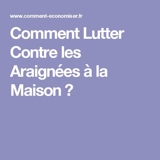 17 best ideas about les araign es on pinterest araign e for Araignees de maison